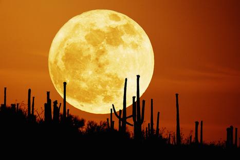 Eclipse Solar, Super-Lua e Equinócio: tudo isto no mesmo dia | Music, Videos, Colours, Natural Health | Scoop.it