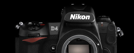 Nikon D4 Specs Leaked: A 16.2MP Rival to the Canon 1DX | Everything Photographic | Scoop.it