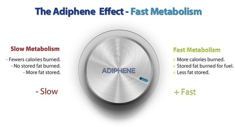 Adiphene Pills Reviews to lose excess body weight effectively | Adiphene Pills Reviews | Scoop.it