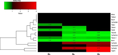 A nonnative and a native fungal plant pathogen similarly stimulate ectomycorrhizal development but are perceived differently by a fungal symbiont | Plant roots and rhizosphere | Scoop.it