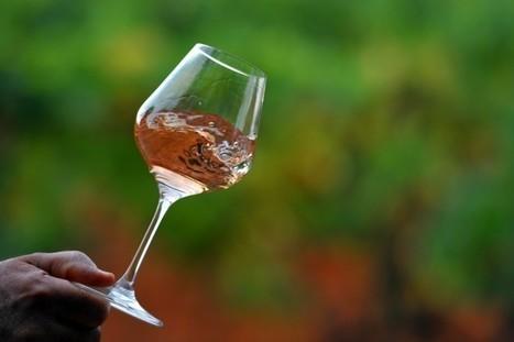 Le rosé représente désormais 30% des vins consommés en France   Le vin quotidien   Scoop.it