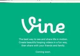 Twitter's Vine gets adult rating - New York Daily News | Uses of Social Media | Scoop.it