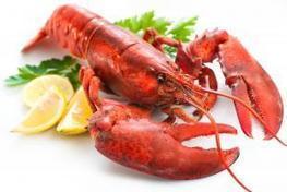 Une pilule de homard pour vivre plus longtemps ? - Medisite | Planète Paléo | Scoop.it