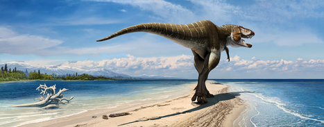 """All Hail the """"Gore King"""" 