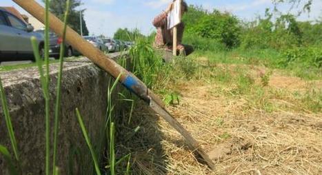 COMPIÈGNE Ils défendent leur jardin partagé | (Culture)s (Urbaine)s | Scoop.it