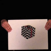A Simple Illusion That Makes a Cube Drawing Move in Three Dimensions | The brain and illusions | Scoop.it