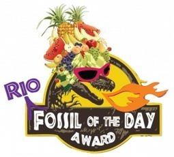 AQLPA » Le Canada gagne le prix fossile du jour à Rio+20 | Les Amis de la Terre | Scoop.it