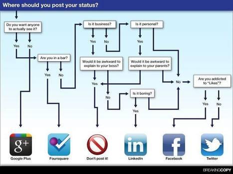 A quoi sert chaque réseau social   Cresus web   Scoop.it