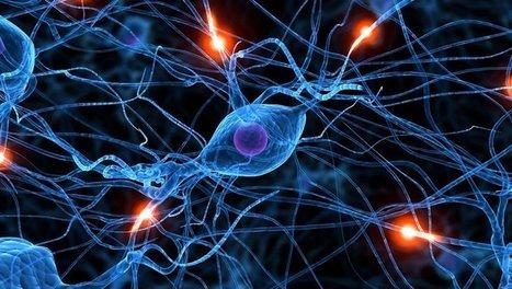 Le MIT conçoit une puce mobile avec un réseau de neurones artificiels | Vous avez dit Innovation ? | Scoop.it