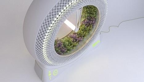 Green Wheel, cultivo hidropónico rotatorio de uso casero | Activismo en la RED | Scoop.it