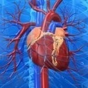 Wellness, Health & Anti-Aging | Open Heart Surgery | Scoop.it