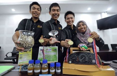 USM students bag 4 awards at British Invention Show - Nation | The Star Online | Moringa - Health and Nutrition | Scoop.it