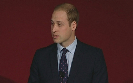 Prince William: we must stop endangered animals becoming extinct - Telegraph | 100 Acre Wood | Scoop.it