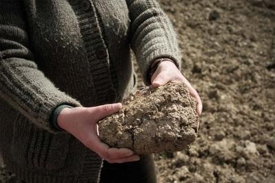 Las lluvias de primavera no bastarán para paliar la sequía | el medio ambiente | Scoop.it