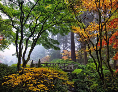 bridge in japanese garden, portland | Japanese Gardens | Scoop.it