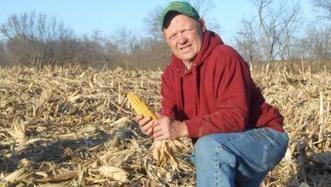 US: Farmers test drought-tolerant corn hybrids | MAIZE | Scoop.it