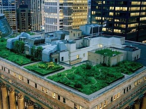 A la découverte des toitures végétalisées : écologique, efficace et innovant ! – Quoi dans mon assiette | C@fé des Sciences | Scoop.it