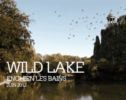 Wild Lake | Bains Numériques - Collectif MU | Art, Sound, Performances, Technologies | Scoop.it