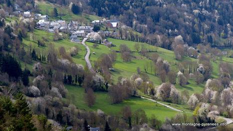 A l'ombre d'une vallée en fleurs - Montagne Pyrénées | Vallée d'Aure - Pyrénées | Scoop.it