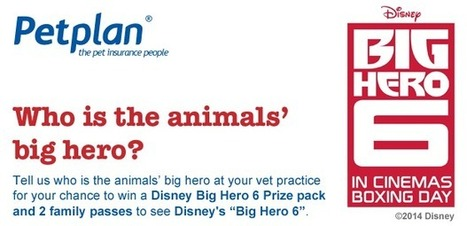 Disney's Big Hero 6 Giveaway for Vets - Petplan Blog | Pet Insurance | Scoop.it