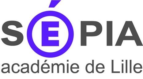 Numérique et Intelligences Multiples dans l'Académie de Lille | Intelligences Multiples | Scoop.it