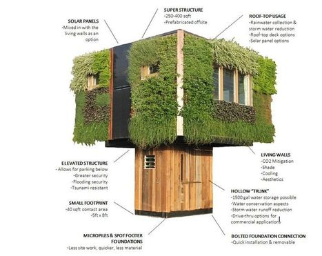 Plant-clad Hawaiian micro-home is perched atop a hollow 'trunk' | Quick Home Renovations and Remodelling | Scoop.it