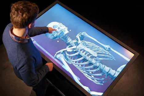 Virtual Autopsy Table | Interactive Institute | Patient Advocacy and End of Life Health | Scoop.it