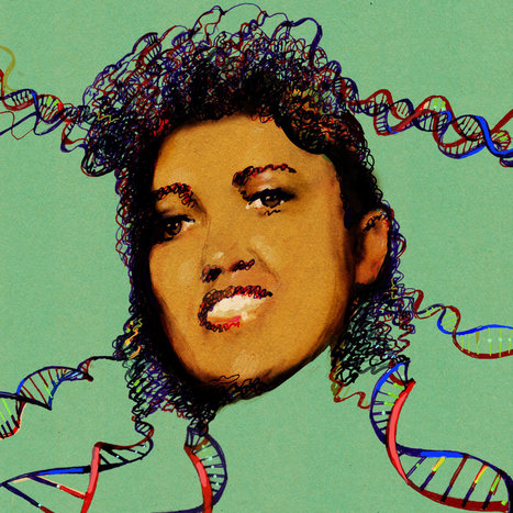 "The Immortal Life of Henrietta Lacks, the Sequel | BLACK IS ... ""Not Guilty! & Ready!"" ... YOU BLACK? 