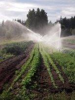 UBC Farm Potluck | Facebook | Vertical Farm - Food Factory | Scoop.it