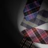Neckties LEDO ALBERTI