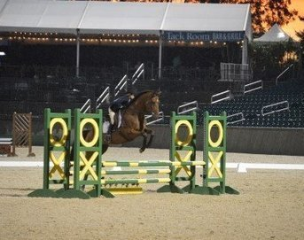 Cosequin Presents Aftercare Spotlight: Thoroughbreds Shine At New Vocations Show - Horse Racing News   Paulick Report   Racing Business   Scoop.it