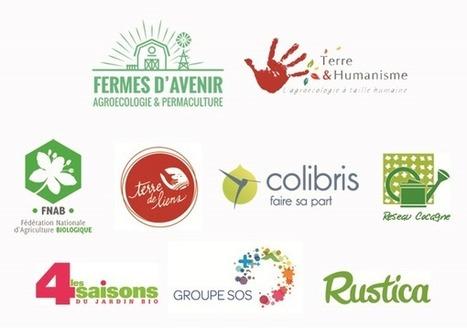 Blue Bees - Finançons une agriculture ... d'avenir ! | De la Fourche à la Fourchette (Agriculture Agroalimentaire) | Scoop.it