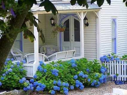 Should I Really Care About My Home and Garden | trwindowservices | Scoop.it