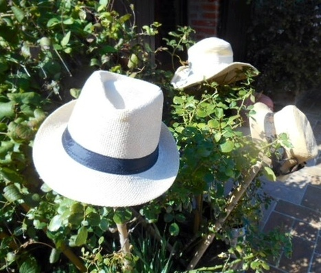 Easter and around in Tuscany and Umbria | Umbria & Italy | Scoop.it