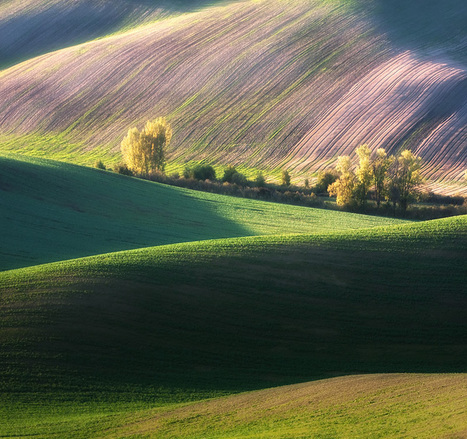 Fresh Countryside Photography by Marcin Sobas | Abduzeedo ... | Share Some Love Today | Scoop.it