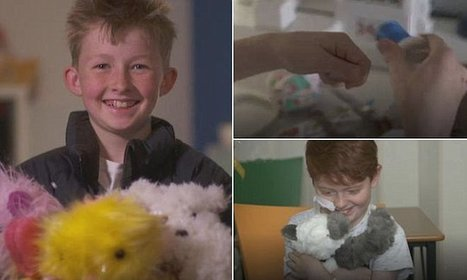Campbell Remess, 12, made 800 teddy bears for sick kids in three years | Notions  Anglais Cycle terminal | Scoop.it