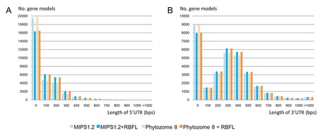 PLOS ONE: Large-Scale Collection and Analysis of Full-Length cDNAs from Brachypodium distachyon and Integration with Pooideae Sequence Resources | wheat bioinformatics | Scoop.it