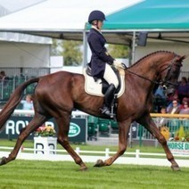 North Americans and Other Pairs to Watch at Burghley - Eventing Nation - Three-Day Eventing News, Results, Videos, and Commentary | Eventing | Scoop.it