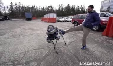 En vidéo : Spot, l'étonnant robot-chien de Boston Dynamics | Connected objects and Geek stuff | Scoop.it