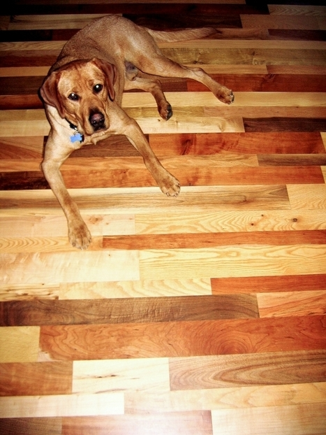 The milling floor: Wood Cycle, Habitat ReStore pair to find use for felled trees - Oregon Observer | Making My New Tiles Design | Scoop.it