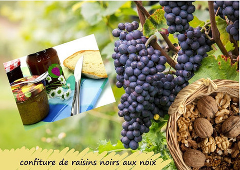 Recette de confiture de raisins noirs aux noix   Petits déjeuners et pains de la rue, dans le monde   Scoop.it