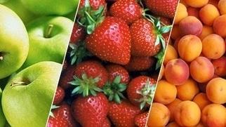 Predaj z dvora - online predaj domácich produktov | Predaj lokálnych potravín | Scoop.it