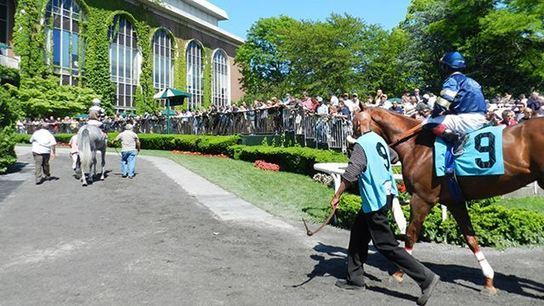 Heading to the Belmont Stakes? - A Guide to Beautiful Belmont Park