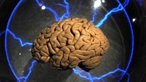 Scientists Successfully 'Hack' Brain To Obtain Private Data | arslog | Scoop.it