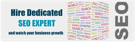 Hire SEO Expert | Affordable SEO Service | Scoop.it