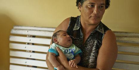 Le virus Zika infecte les cellules cérébrales | YetiYetu | Scoop.it