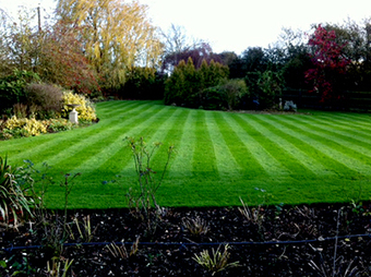 How to look after your lawn in winter | Gardening | Scoop.it