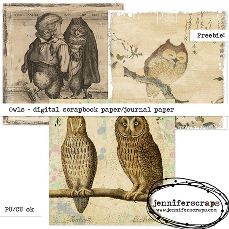 Owls – Freebie Paper Pack | Free Digital Scraps | Scoop.it
