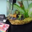 The Quantified Fish: How My Aquarium Uses Raspberry Pi - ReadWrite | Arduino, Netduino, Rasperry Pi! | Scoop.it