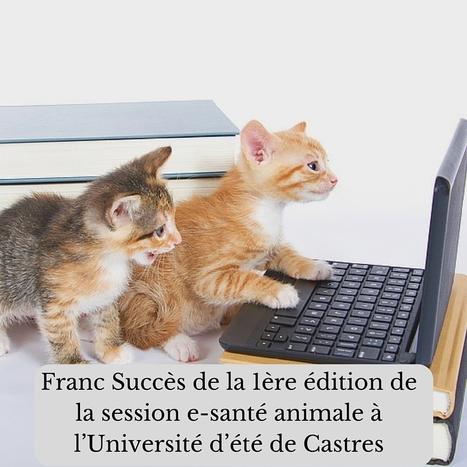 Franc Succès de la 1ère édition de la session e-santé animale à l'Université d'été de Castres - Pharmageek | Quantified Pet | Scoop.it